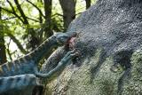 Dinopark Vyškov - 535169 - oběd